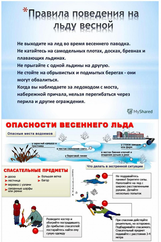 Из рук в руки помощь студенту материальная помощь в украине студентам сиротам